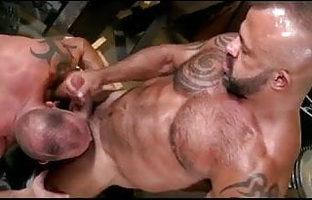Daddy Sex Videos